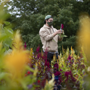UMass Amherst Agricultural Sciences Again Ranked Among The Top Five in Global Rankings by U.S. News