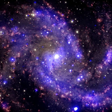 Monster galaxies from the beginning of time