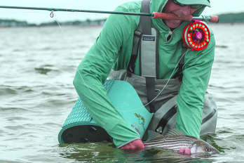New Recreational Angling Technologies May Pose Risks to Fisheries