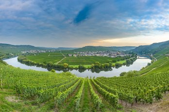Research Reveals Agricultural Runoff's Role in Global Warming