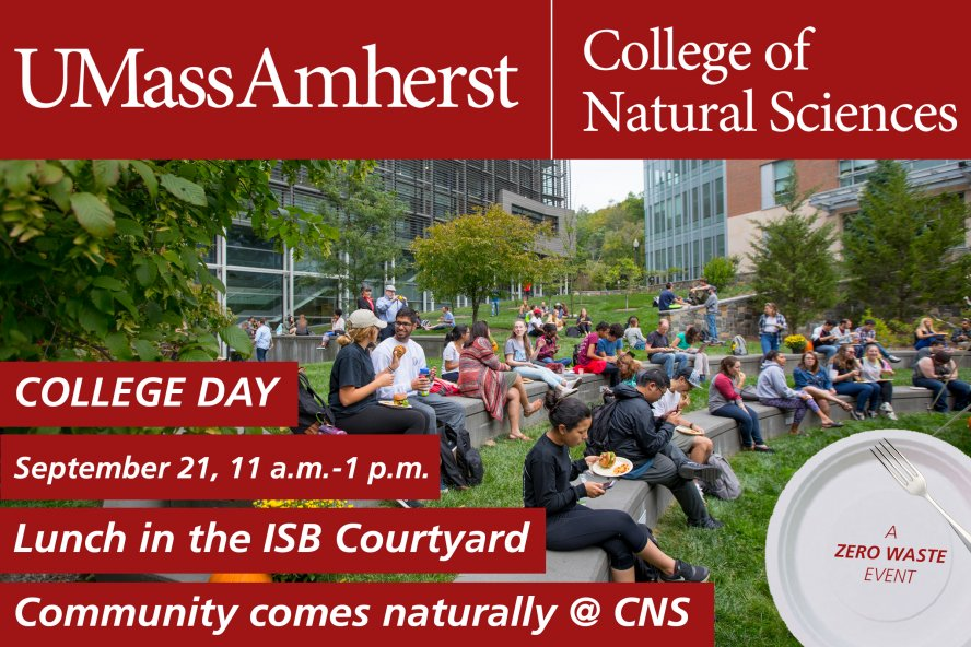 College Day invitation: Lunch in the ISB courtyard 11am-1pm