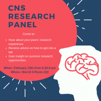 CNS Research Panel February 13, 2019