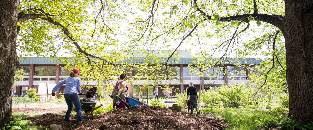 Student-led gardens serve as model for adaptive agriculture