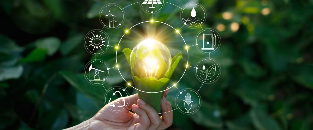 A hand is holding a lightbulb with symbols of renewable energy surrounding it