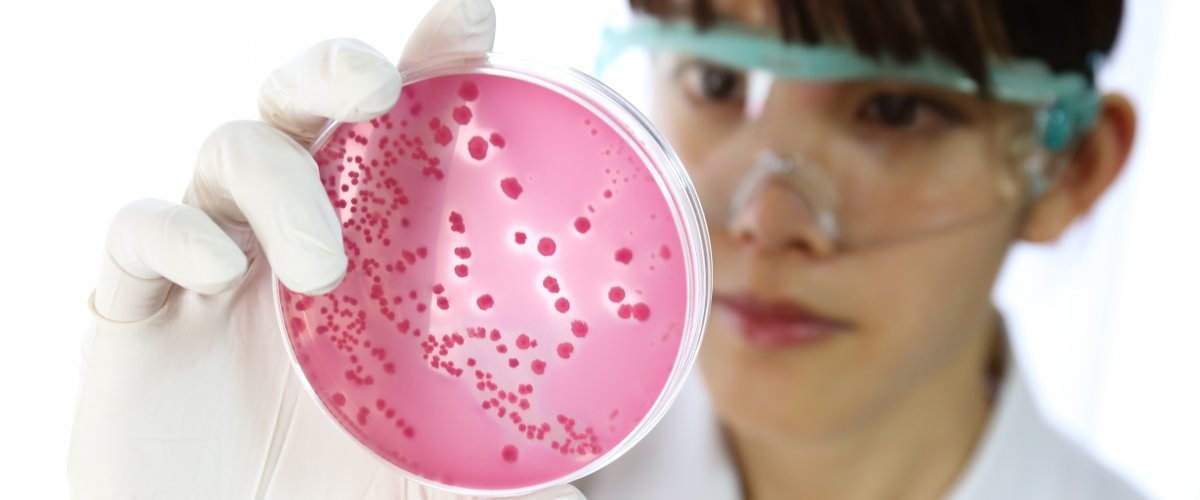 microbiologist with bacteria